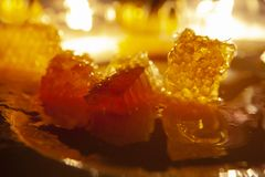 Sweet honey on comb with warm orange yellow lighting royalty free stock images