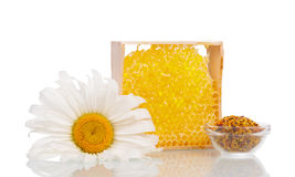 Sweet Honey comb Stock Photo