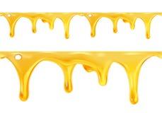 Sweet honey drips seamless vector Stock Photos