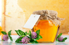 Sweet honey in glass jars with flowers Royalty Free Stock Photography
