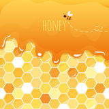 Sweet honey glossy background with copy space for your text.. Sweet honey glossy background with copy space for your text. Included seamless pattern with Stock Image