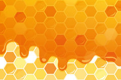 Sweet honey glossy background with copy space for your text. Included seamless pattern with honeycomb. Vector Stock Images