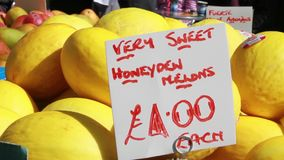 Sweet honey melons stock footage