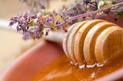 Sweet honey spoon Royalty Free Stock Photography