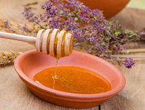 Sweet honey spoon Stock Images
