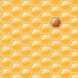 Sweet honeycomb Royalty Free Stock Image