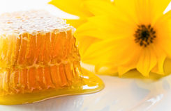 Sweet honeycomb with honey Royalty Free Stock Images