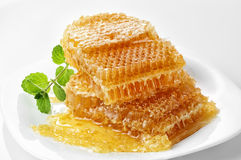 Sweet honeycomb Royalty Free Stock Image