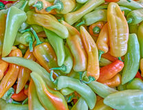 Sweet horn peppers closeup Stock Photography
