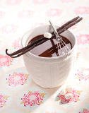 Sweet hot Cacao. With Marshmallows and vanilla sticks on a decorative background Stock Photography