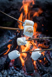 Sweet and hot marshmallows on stick over the bonfire. In summer Royalty Free Stock Image