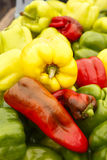 Sweet and Hot Peppers Stock Photos
