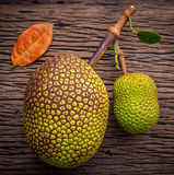 Sweet Jack fruit on shabby wooden background .Tropical fruit  sw. Eet and aromatic flesh of a ripe jack fruit ('Artocarpus heterophyllus') tempts buyers at a Royalty Free Stock Photography