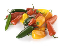 Sweet and Jalapeno Peppers. Colorful sweet and jalapeno peppers on a white background Royalty Free Stock Photos