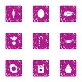 Sweet joy icons set, grunge style. Sweet joy icons set. Grunge set of 9 sweet joy vector icons for web isolated on white background Stock Images