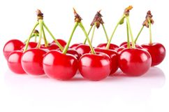 Sweet juicy cherry Stock Photography