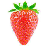 Sweet Juicy Strawberry Isolated on the White Background Stock Photos