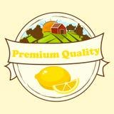 Sweet juicy whole and slice lemon Stock Image
