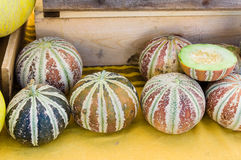 Sweet Kajari melons at the market stock images
