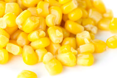 Sweet kernel corn Stock Image