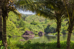 Sweet lake in Arambol, North Goa, India Royalty Free Stock Image