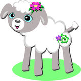 Sweet Lamb with Spiral Flower Royalty Free Stock Photos