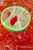 Sweet lemon on the ice stock photo