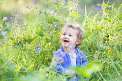 Sweet laughing baby girl in a purple sweater in meadow Stock Image