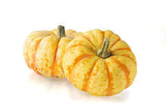 Sweet Lightning Squash Royalty Free Stock Image