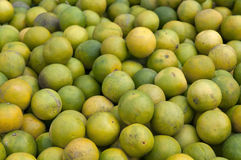 Sweet Lime Royalty Free Stock Image
