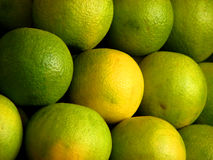 Sweet Lime Royalty Free Stock Images