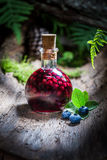 Sweet liqueur in a bottle with alcohol and blueberries Royalty Free Stock Photography