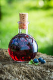 Sweet liqueur in a bottle with blueberries and alcohol Royalty Free Stock Image