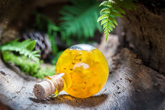 Sweet liqueur with honey and linden Royalty Free Stock Image