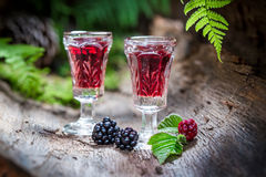 Sweet liqueur made of alcohol and blackberries Royalty Free Stock Photos