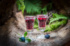 Sweet liqueur made of alcohol and blueberries in summer Royalty Free Stock Photos
