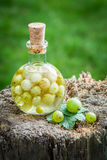 Sweet liqueur made of alcohol and gooseberries Royalty Free Stock Photo