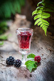 Sweet liqueur made of blackberries and alcohol Stock Photography
