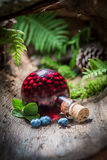 Sweet liqueur made of blueberries and alcohol in forest Stock Photos