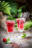 Sweet liqueur made of wild strawberry and alcohol in forest Royalty Free Stock Photos