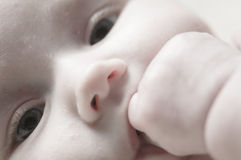 Sweet littel Baby Close Up Royalty Free Stock Photo