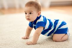 Sweet little asian baby boy royalty free stock images