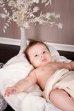 Sweet little baby infant toddler on blanket in basket Stock Photos