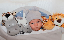 Sweet little baby lying on the bed surrounded of cute safari stuffed animals Royalty Free Stock Photography