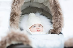 Sweet little baby sitting in a winter fur stroller royalty free stock images