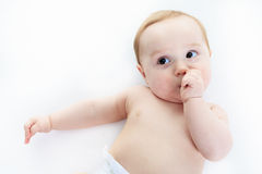 Sweet little boy in studio white background Stock Photos
