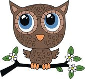 A sweet little brown owl Royalty Free Stock Photography
