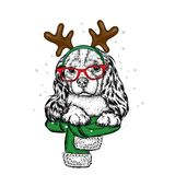 A sweet little dog with glasses, a scarf with horns on his head. New Year costume. Vector illustration for a postcard or a poster. Stock Photos