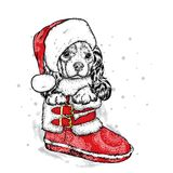 A sweet little dog in a New Year`s cap is sitting in a shoe. Purebred puppy. Spaniel in winter clothes. Vector illustration. A sweet little dog in a New Year`s Royalty Free Stock Image