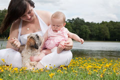 Sweet little family Royalty Free Stock Image